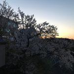 ✿春の装い✿…ジュエリー3選
